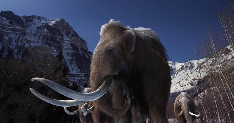 Woolly_Mammoth_1_1