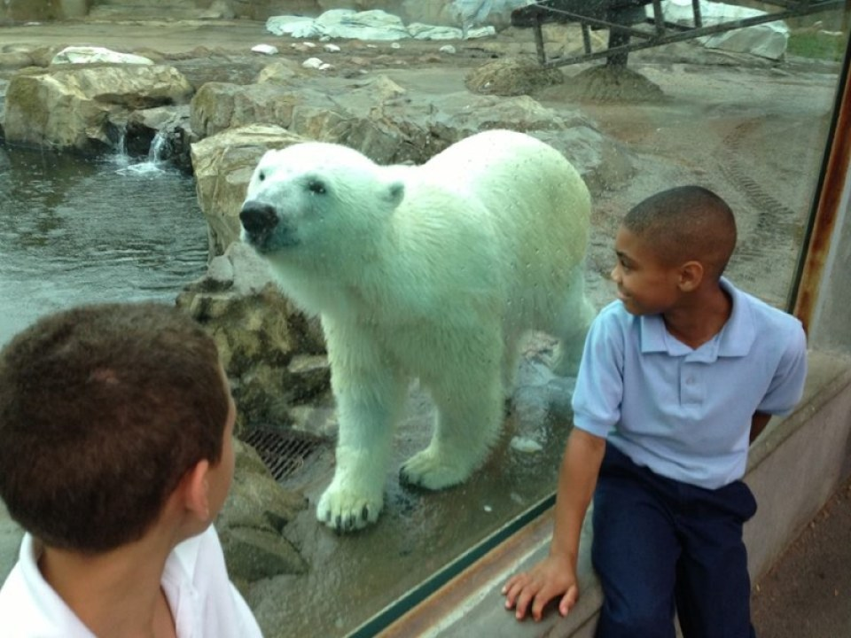 Glacier Run. Courtesy Louisville Zoo