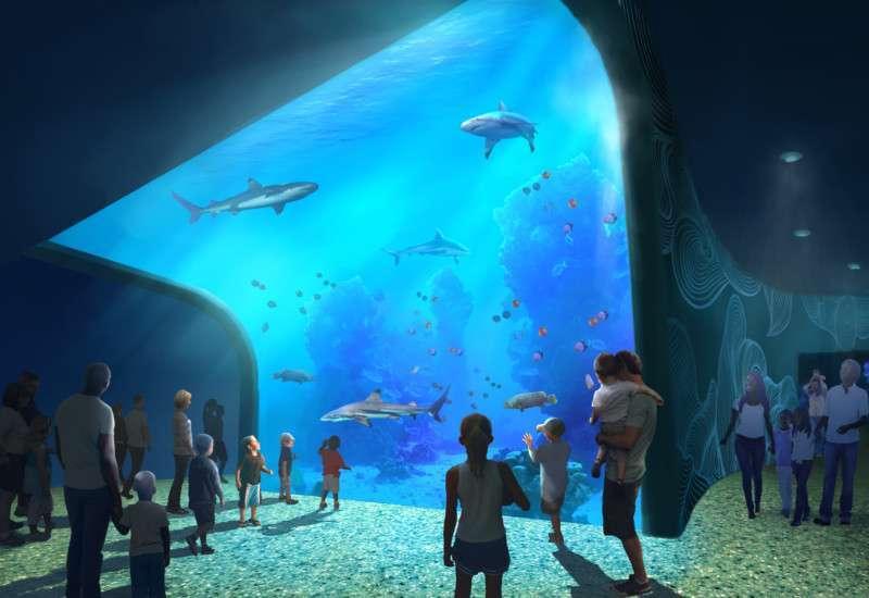 inpark magazine pgav destinations zooceanarium gateway to the ocean