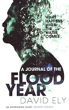 A Journal of the Flood Year - David Ely
