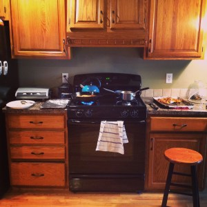 This is about the amount of counter space I had at the old place. Here, it's about 1/3 of my counter space. I was able to do all my prep on another counter and still have room next to the stove for everything else. I fucking love this kitchen.