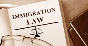 ImmigrationLawBook