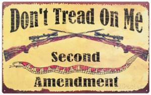 second-amendment