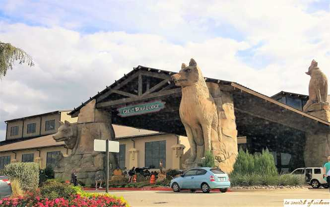outside great wolf lodge grapevine