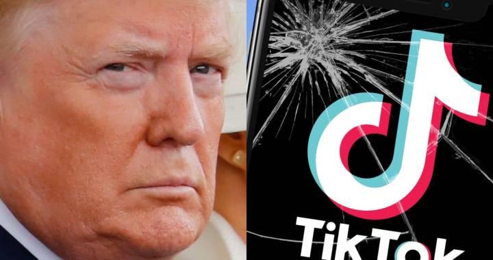 TikTok presenta una petizione contro l'ordine di Trump