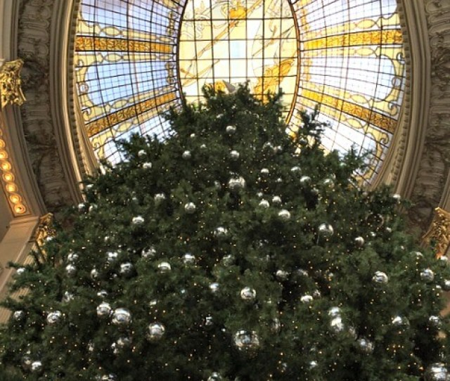Christmas Tree At Neiman Marcus San Francisco