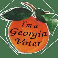 Image result for georgia voter