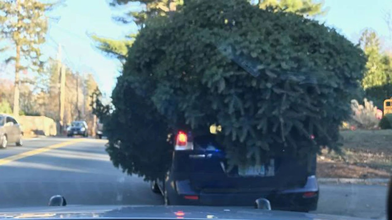 Cops Photograph Car With Massive Christmas Tree Tied To