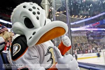 Wildwing from the Anaheim Ducks.