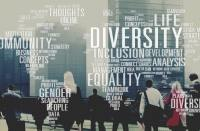 3 best diversity inclusion strategies