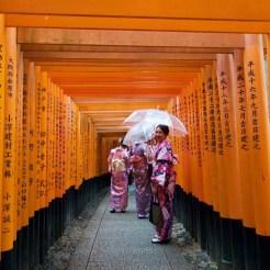 In the torii gates of Fushimi Inari
