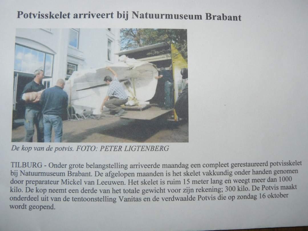 Krantenknipsels | Potvis Natuur Museum Brabant