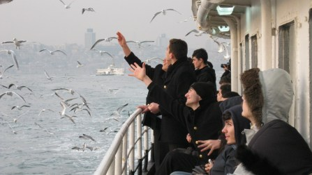 Catch an Istanbul ferry and feed the seagulls!