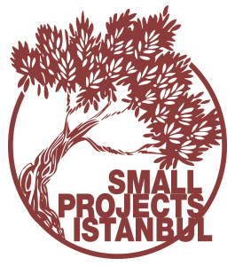 Small Projects Istanbul - making a difference