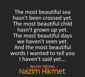 Words of wisdom from Nazim Hikmet