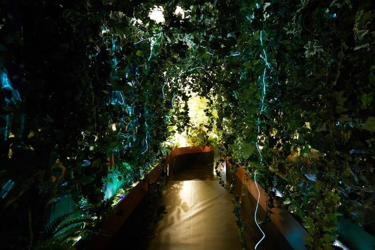 Perrier_Jout_Bio_responsive_garden_Bompass__Parr