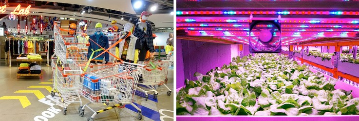 Insider Trends – Retail Innovation Programmes