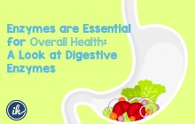 Enzymes are Essential for Overall Health: A Look at Digestive Enzymes