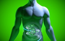 How Intestinal Bacteria Affects Your Thoughts and Behavior