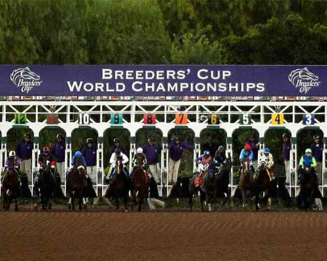 Breeders' Cup World Championships - InsideSport