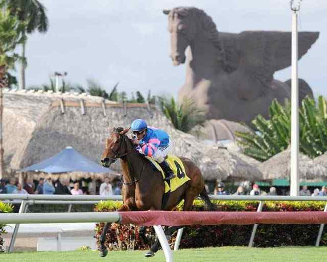 Pegasus World Cup Horse Racing - InsideSport