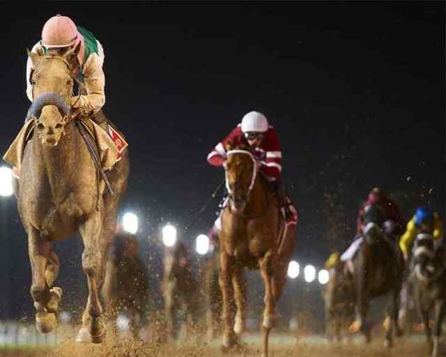 The Dubai World Cup Horse Racing - InsideSport