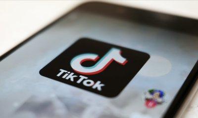 Judge postpones Trump's TikTok ban in suit brought by users