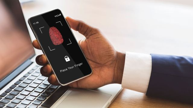 Biometric IDs