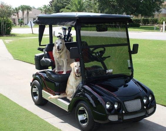 Bentley Cart on Yamaha Golf Cart Trunk