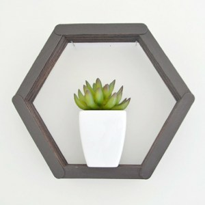 DIY Hexagon Popsicle Shelf | Fox Den Feature