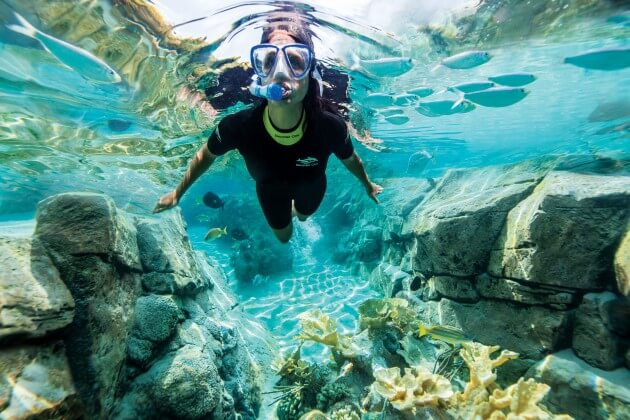 DCO_15_ReefLadySwim_4H8A5238