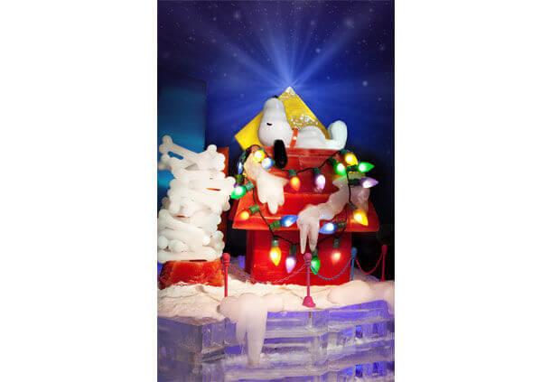 mcogp_christmas_phototour21