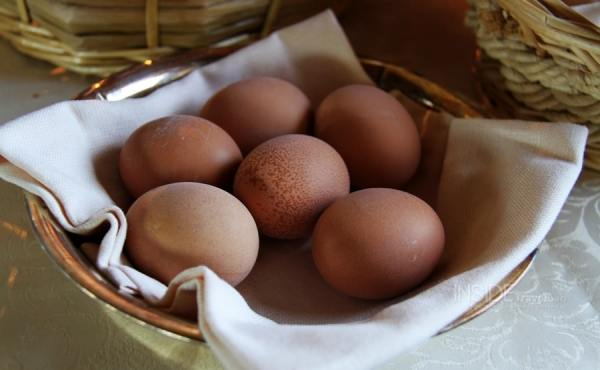Visiting Umbria Eggs