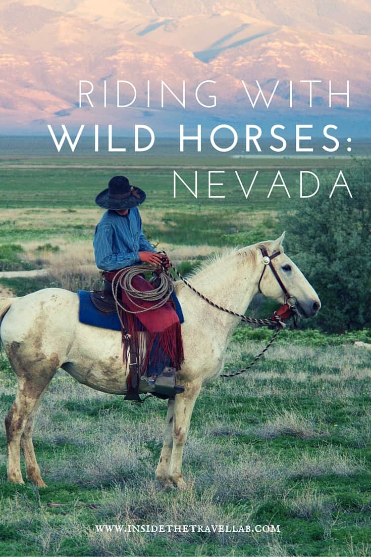Unusual things to do in Nevada > Head to the Wild West and ride with the wild horses - via @insidetravellab