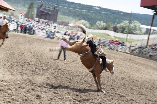 Bucking horse at Williams Lake Stampede