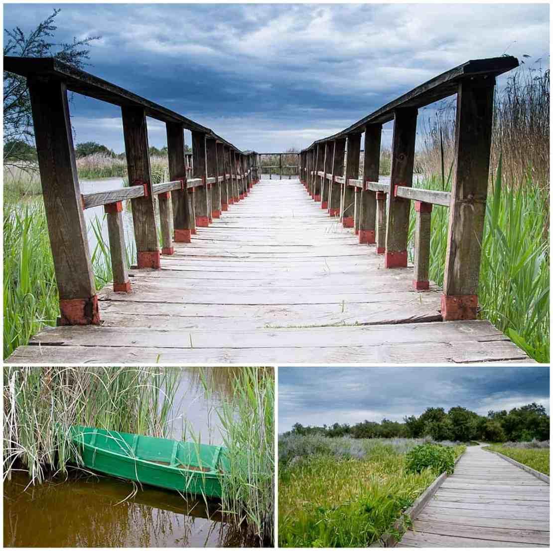 Tablas de Daimiel Spain walkways and wetlands