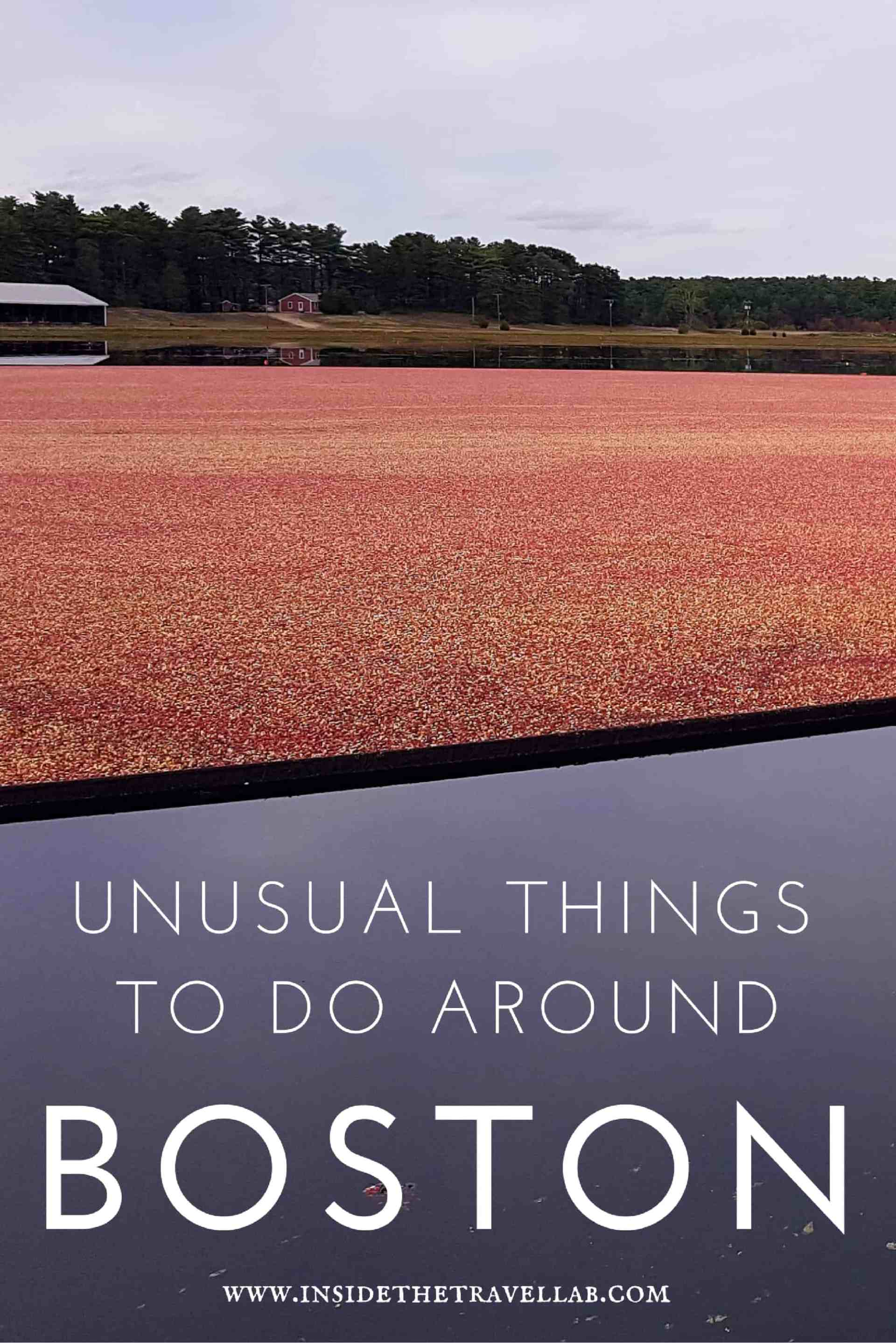 unusual-things-to-do-around-boston