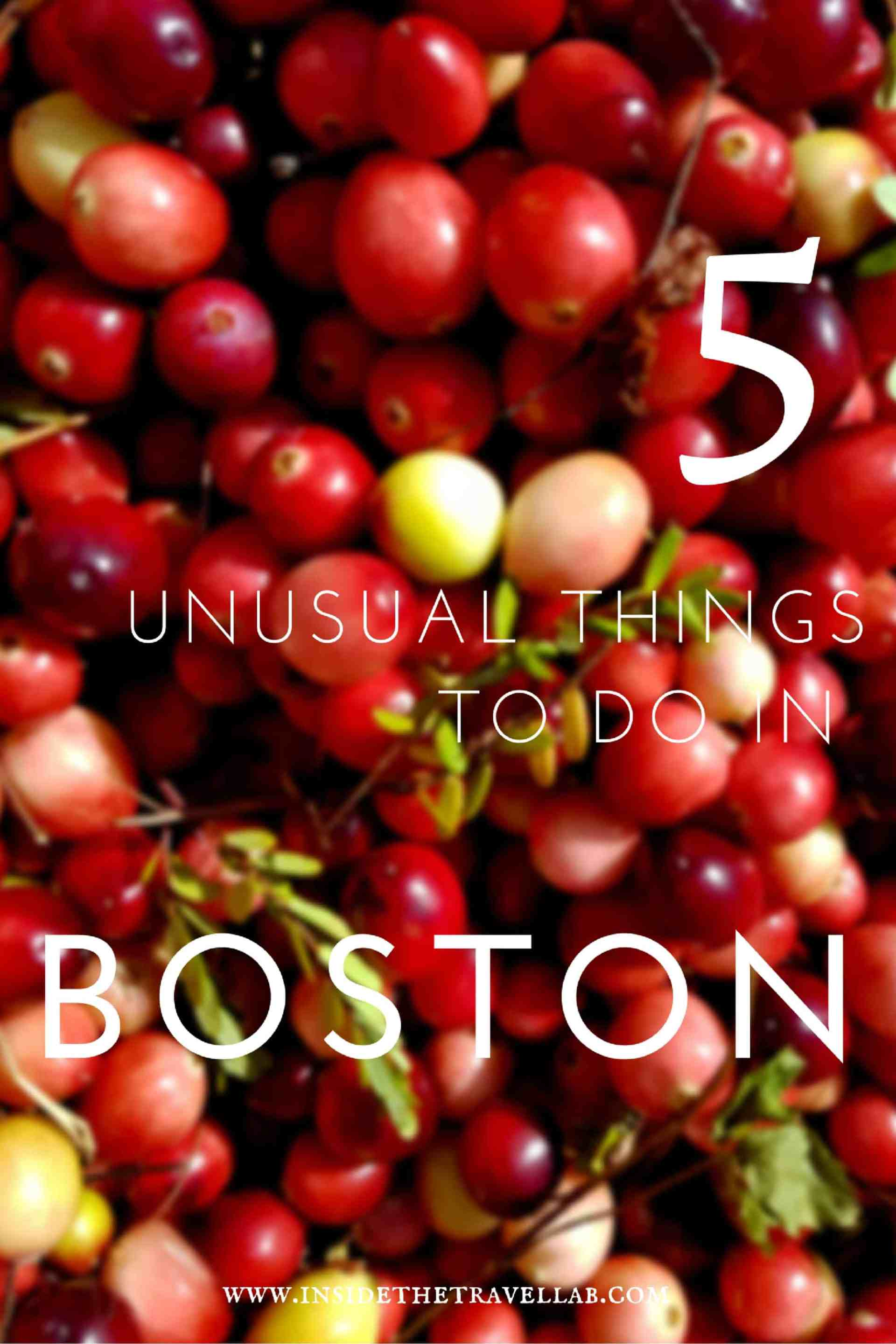 unusual-things-to-do-in-boston