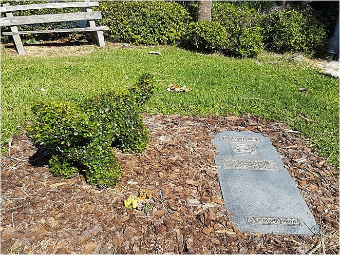 Unusual things to do in Daytona Brownie Grave