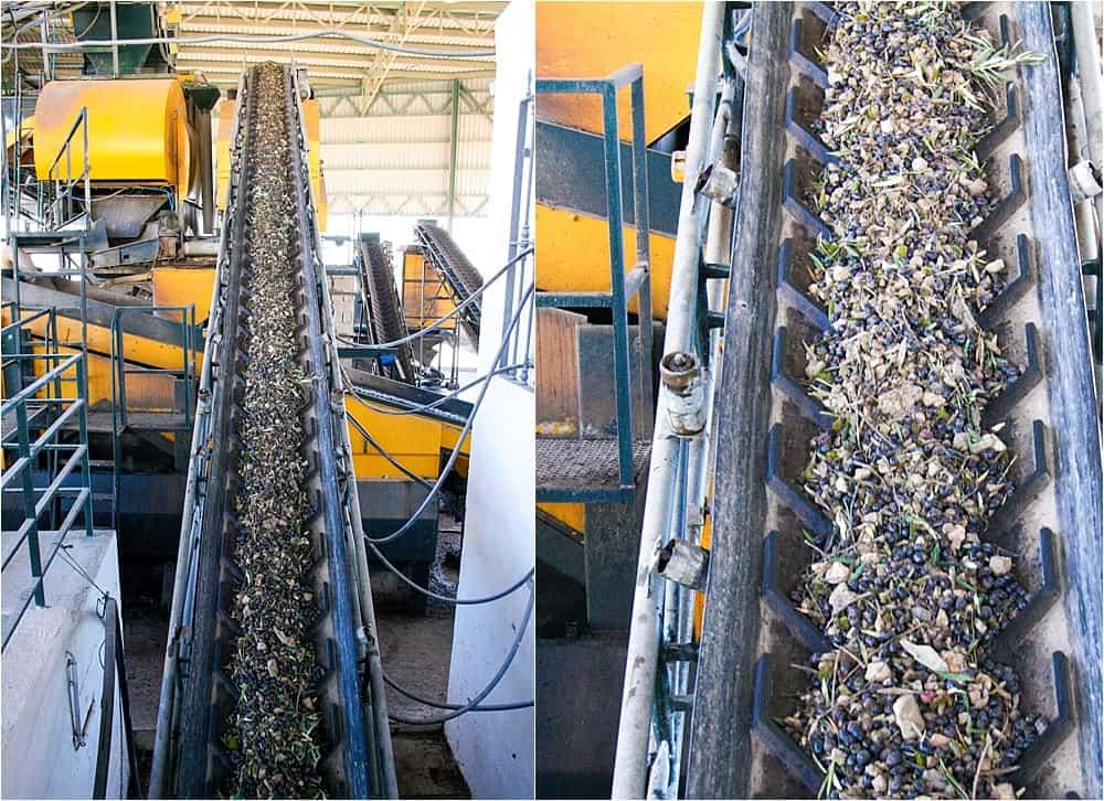 Melgarejo Olive Oil Factory in Jaen