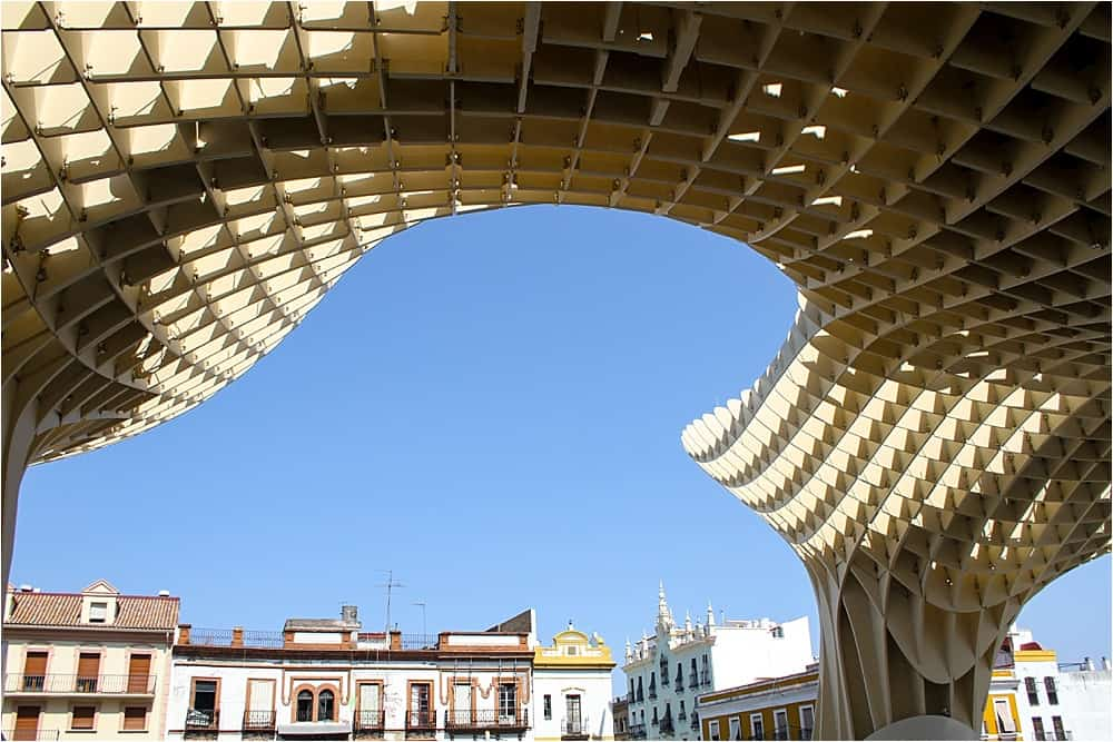 Seville Spain - Metropol Mushrooms-3