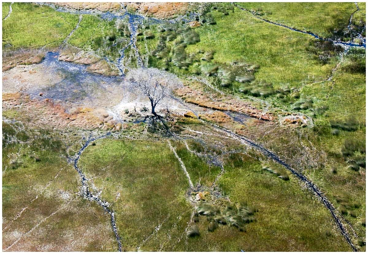 Amazing Okavango Delta from the sky