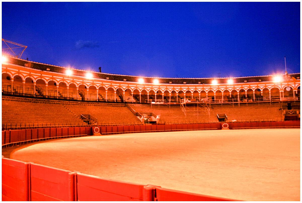 What to do in Seville-explore the history of bullfighting