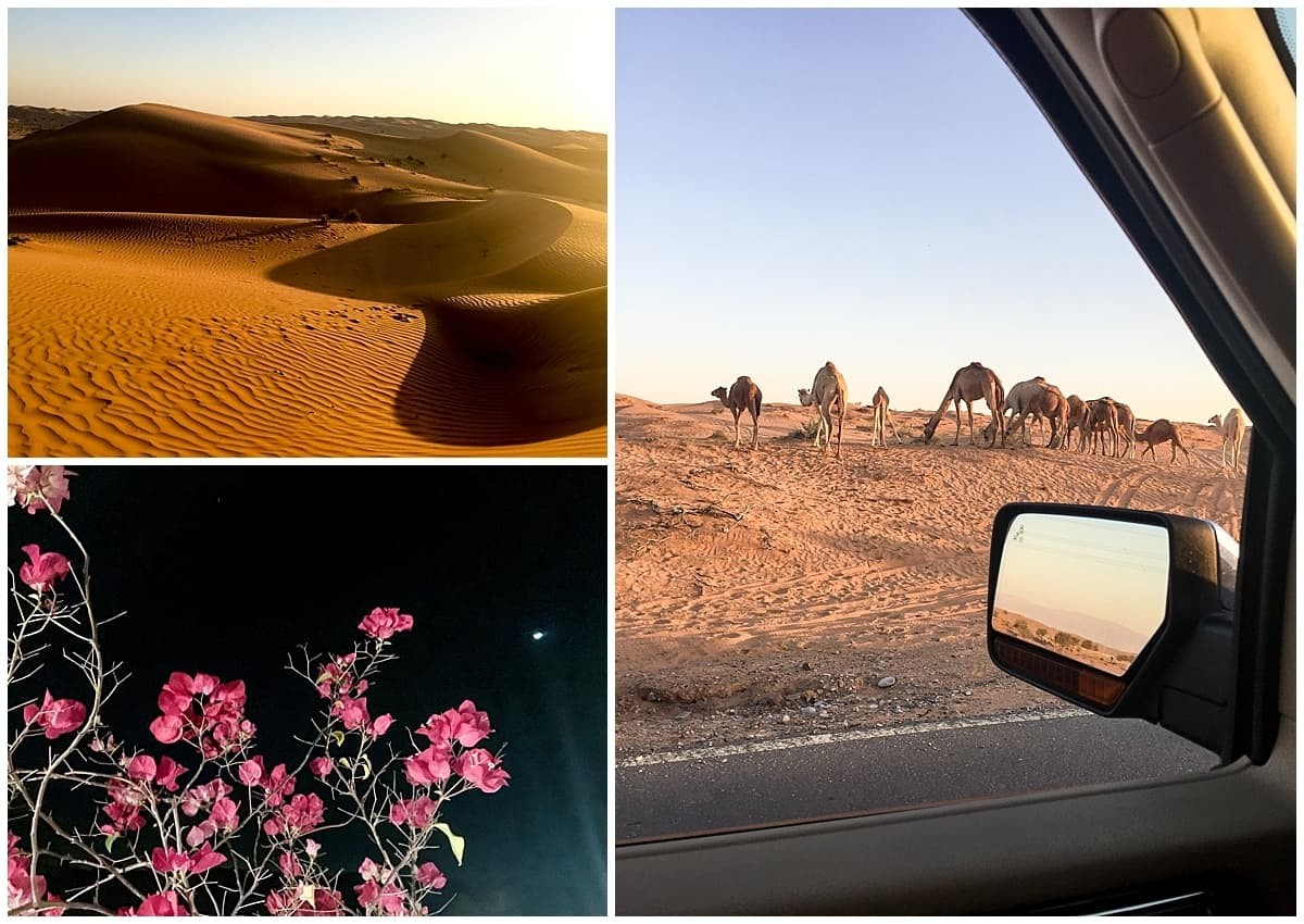 Getting Around Ras Al Khaimah