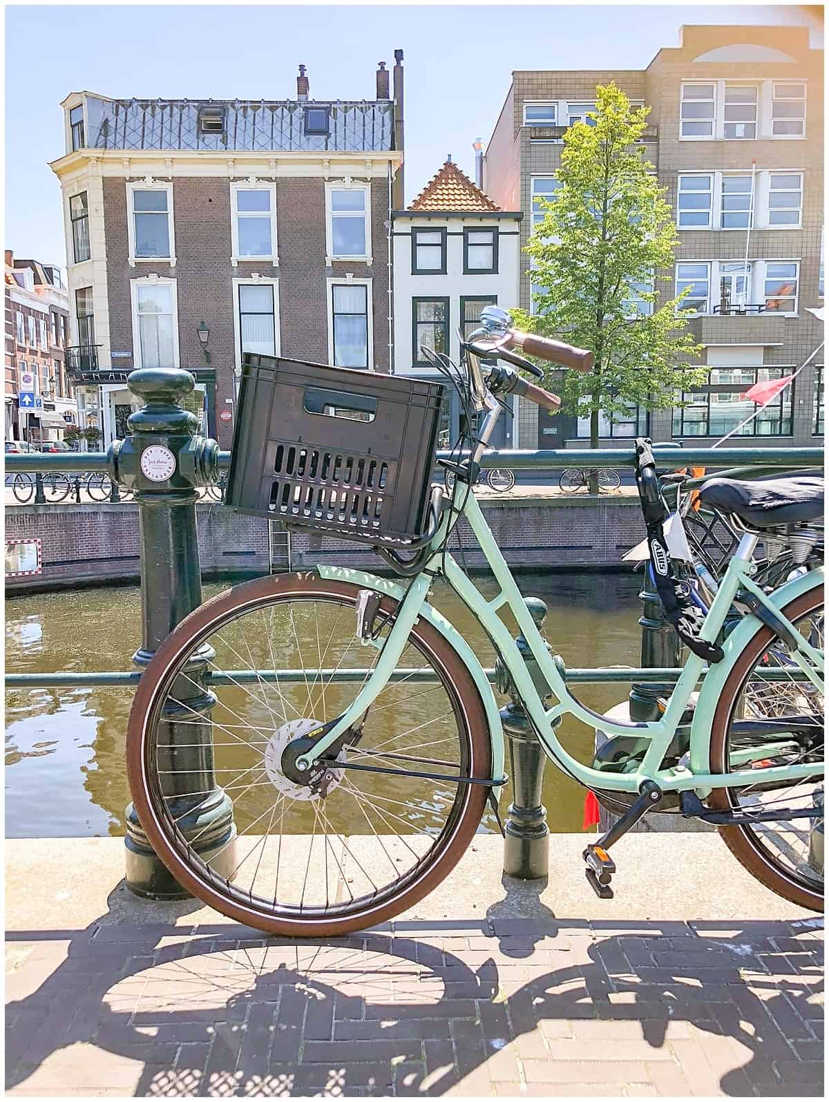 Bicycle in the Hague