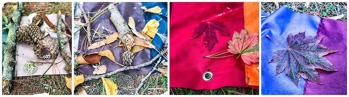 Rainbow leaves at Westonbirt Arboretum