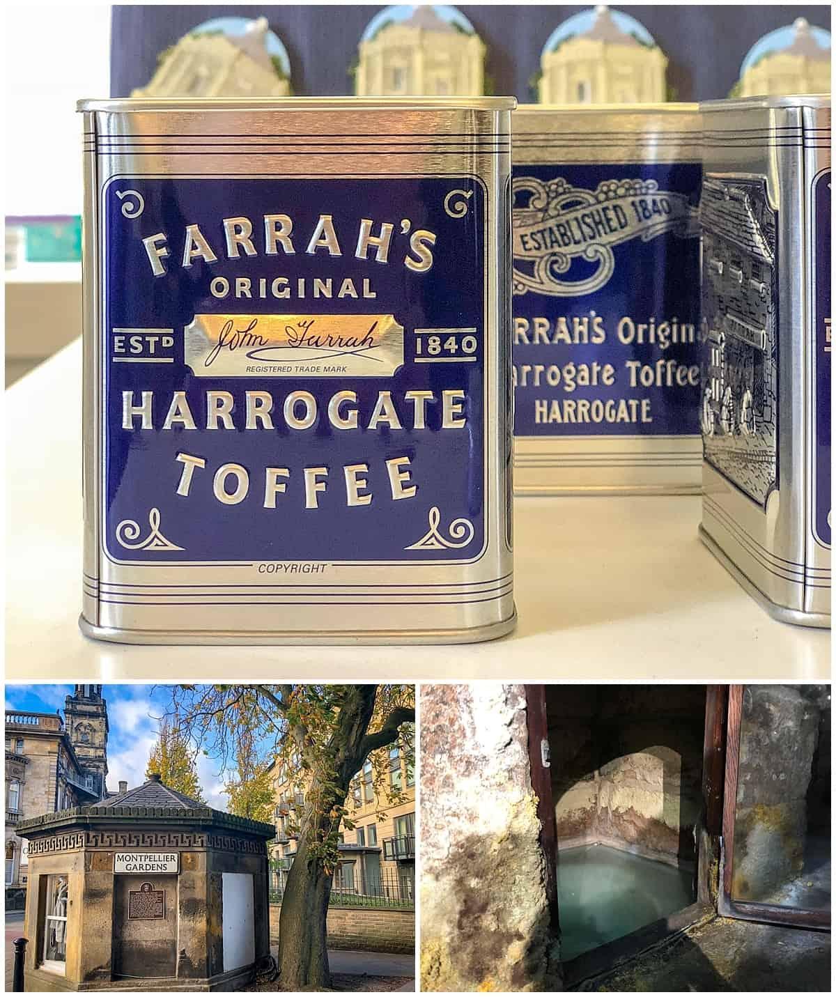 Things to do in Harrogate