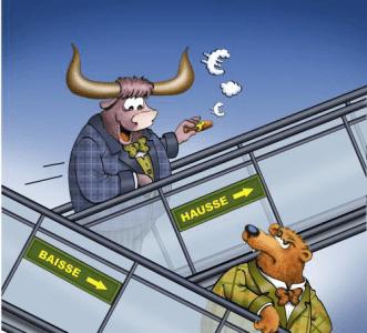 Bulle Bär Cartoon Start
