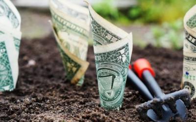 Geldanlage: Prominente verraten Ihre Anlagestrategien