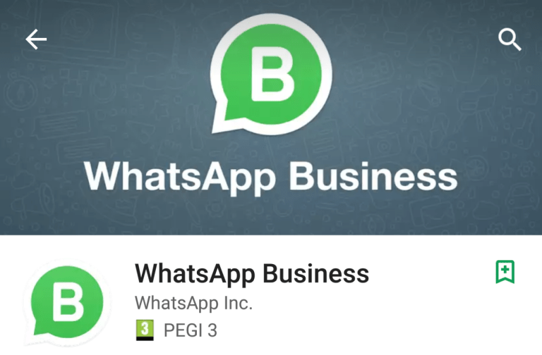 WhatsApp Business a pagamento